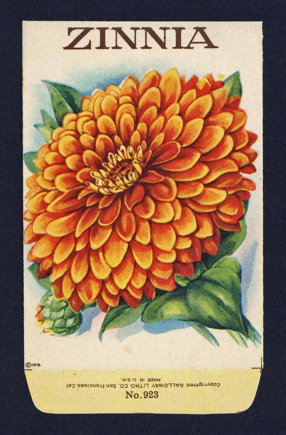 Zinnia Antique Stock Seed Packet, orange