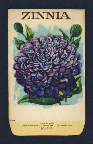Zinnia Antique Stock Seed Packet, purple