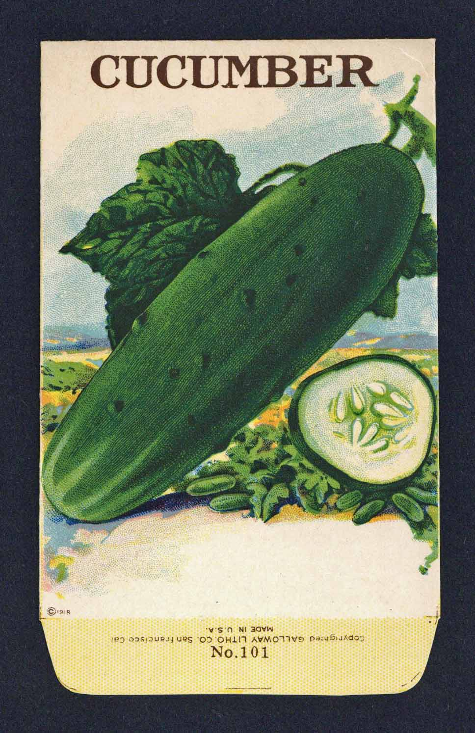 Cucumber Antique Stock Seed Packet