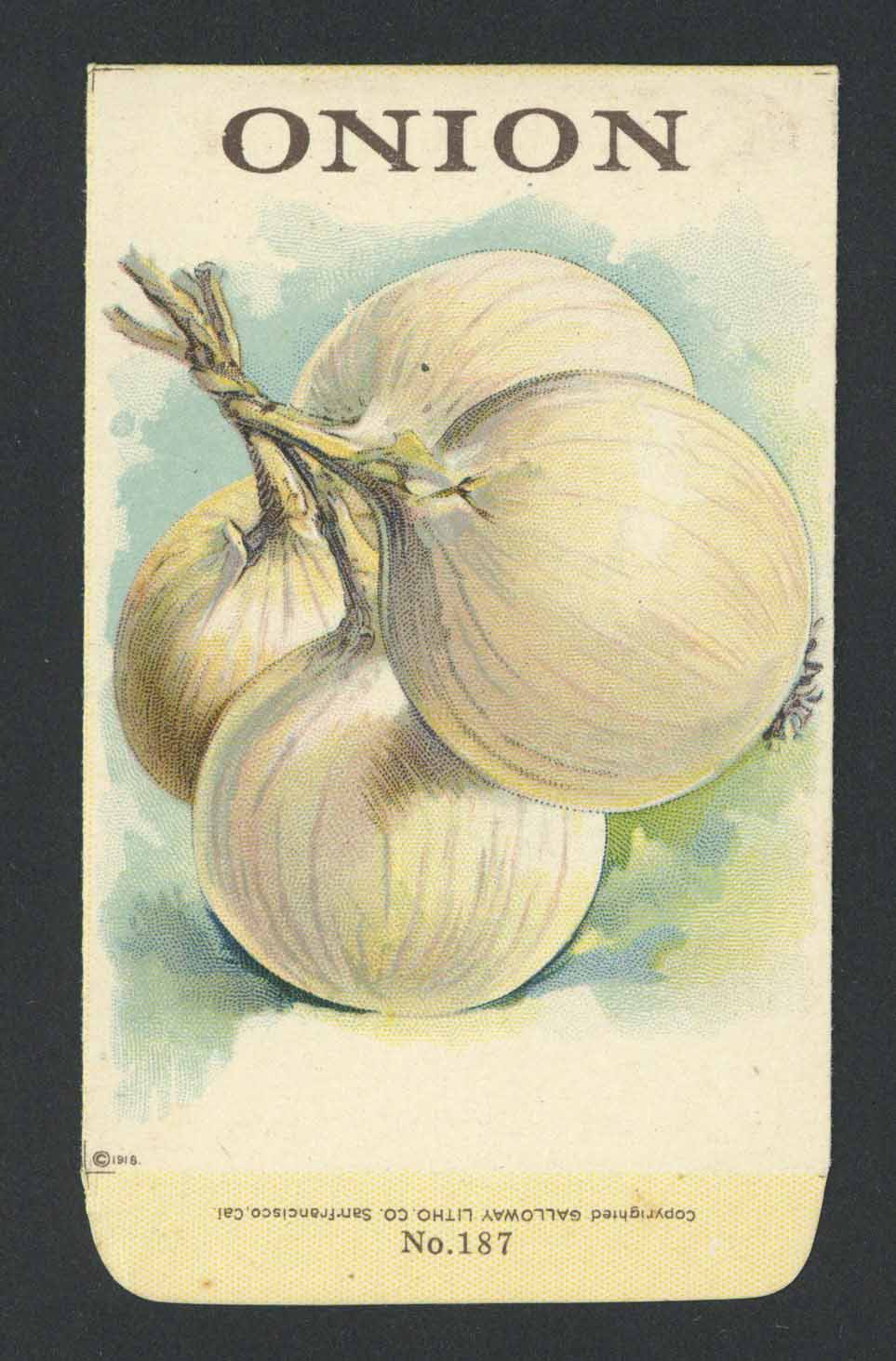 Onion Antique Stock Seed Packet