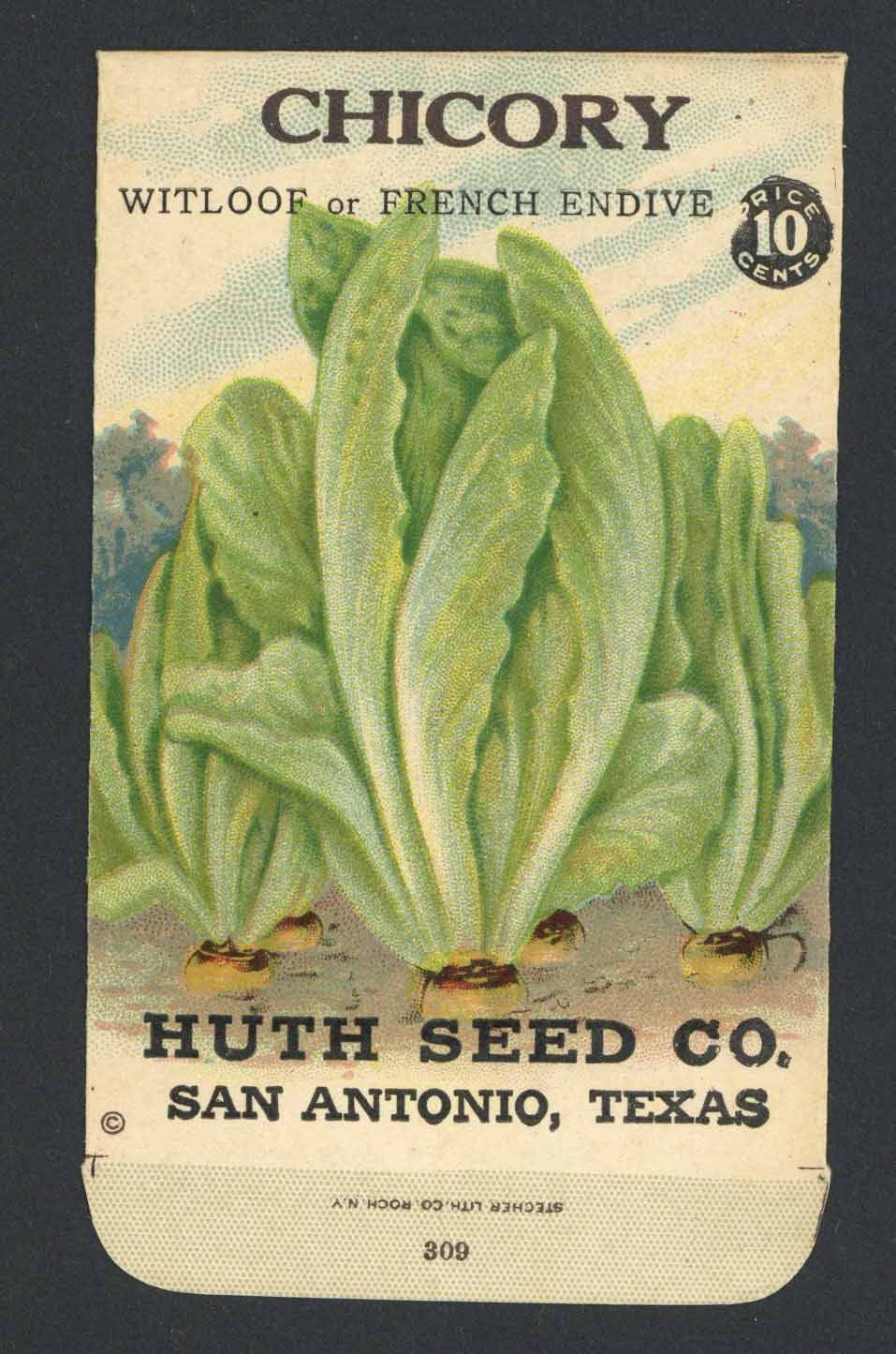 Chicory Antique Huth Seed Co. Packet