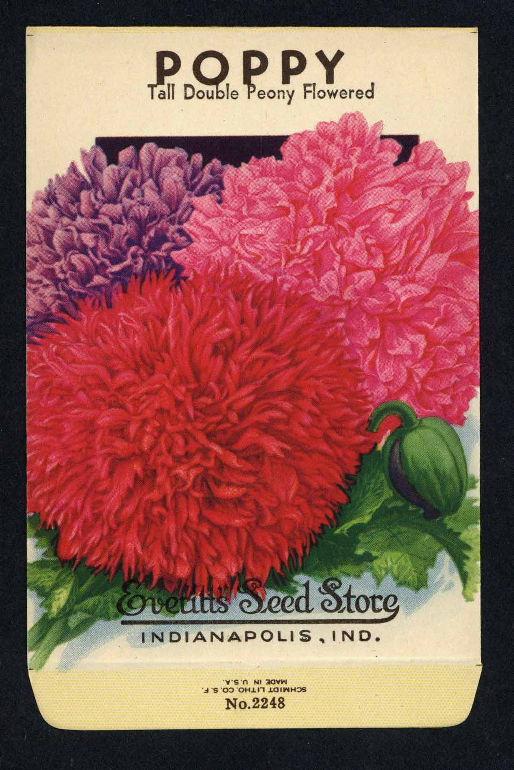 Poppy Vintage Everitt's Seed Packet, Double Peony