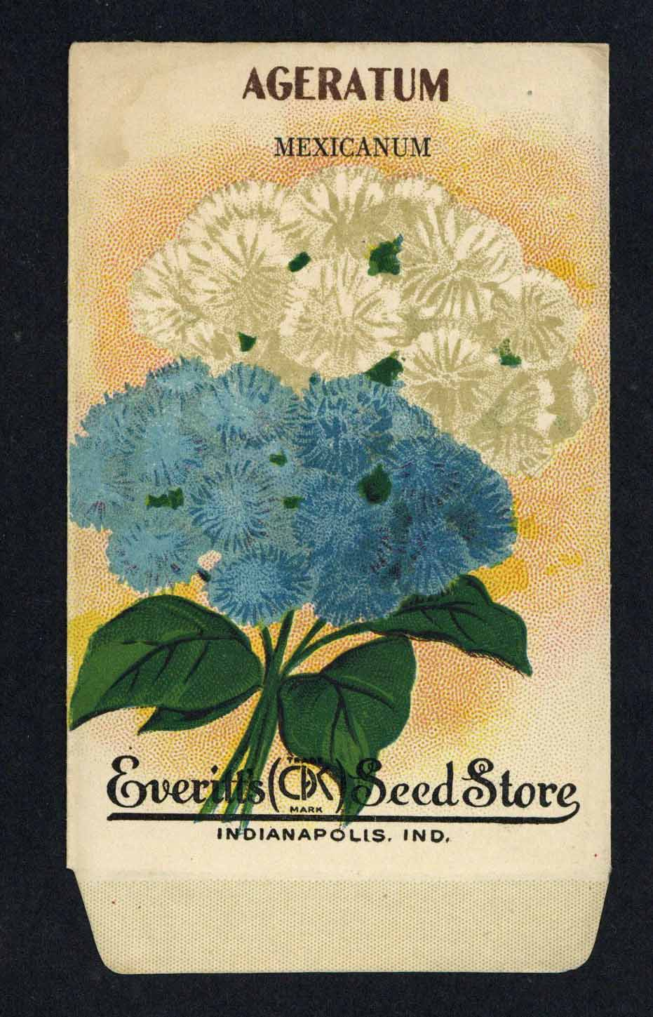 Ageratum Antique Everitt's Seed Packet, Mexicanum