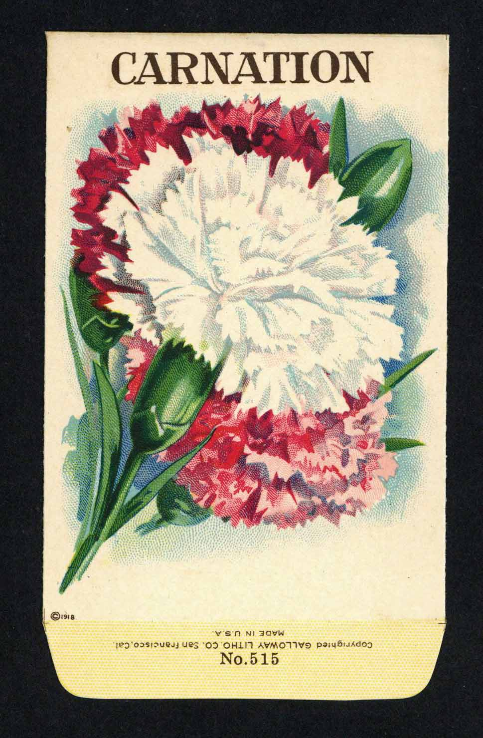 Carnation Antique Stock Seed Packet