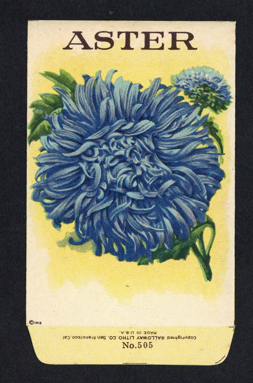 Aster Antique Stock Seed Packet, blue