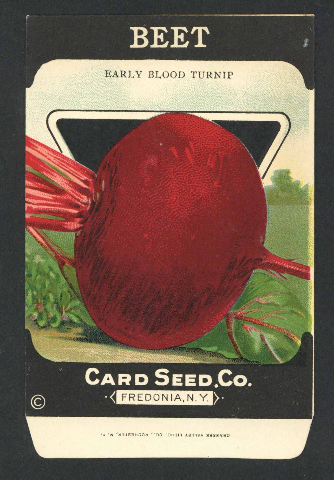 Beet Antique Card Seed Co. Seed Packet, Early Blood Turnip