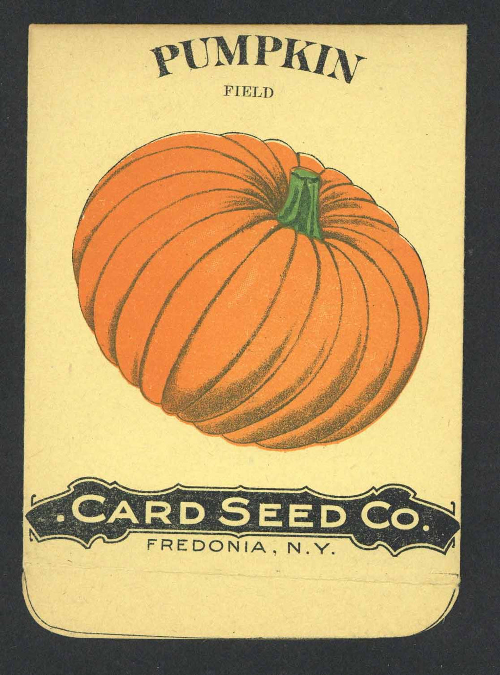 Pumpkin Antique Card Seed Co. Seed Packet