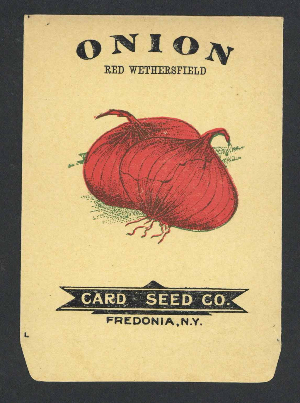 Onion Antique Card Seed Co. Seed Packet
