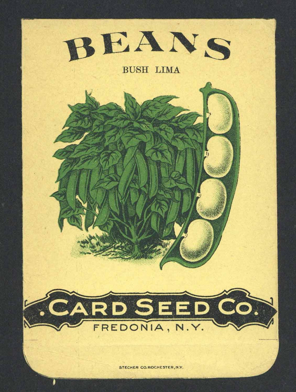 Beans Antique Card Seed Co. Seed Packet, Bush Lima
