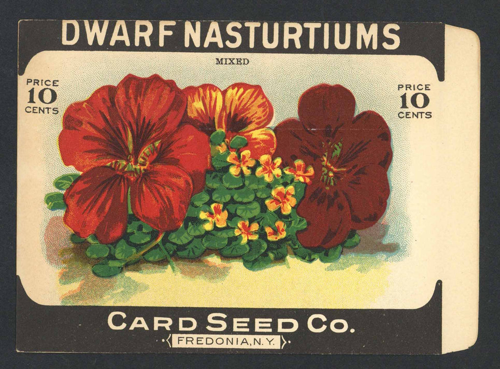 Dwarf Nasturtiums Antique Card Seed Co. Packet
