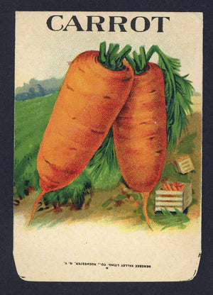 Carrot Antique Genesee Valley Litho. Seed Packet, 617