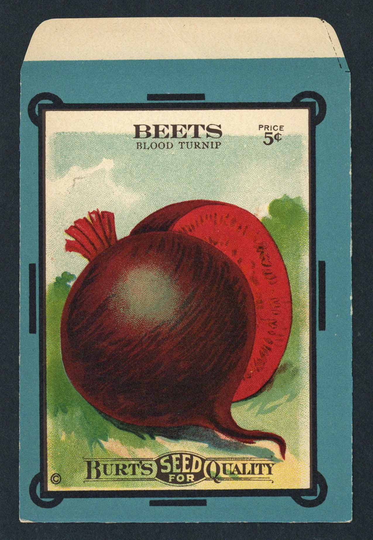 Beets Antique Burt's Seed Packet, Drumhead, L