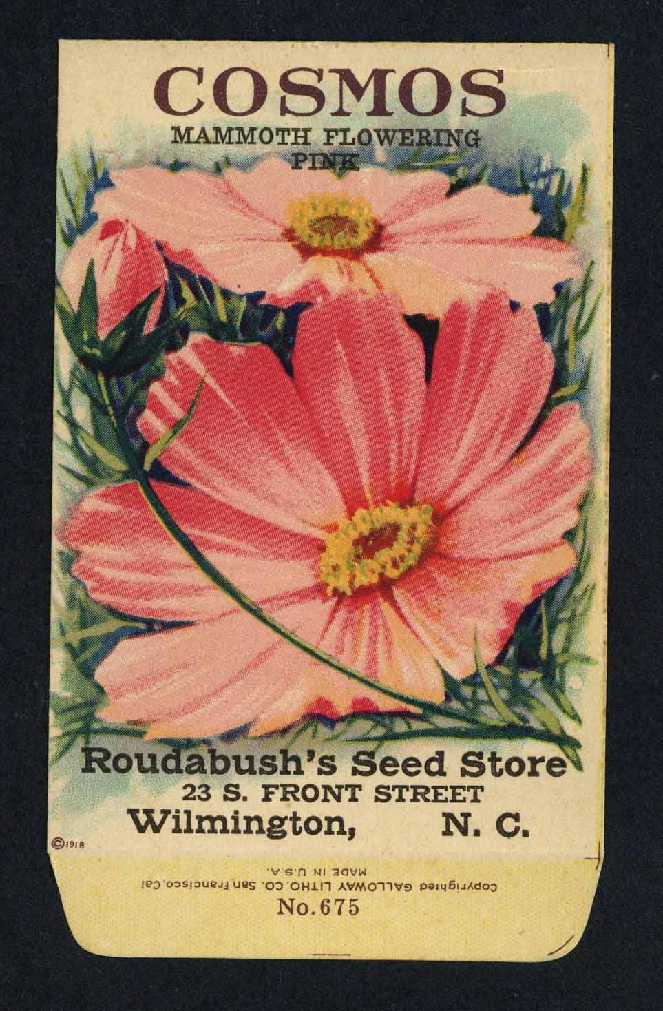 Cosmos Antique Roudabush's Seed Store Seed Packet, Pink