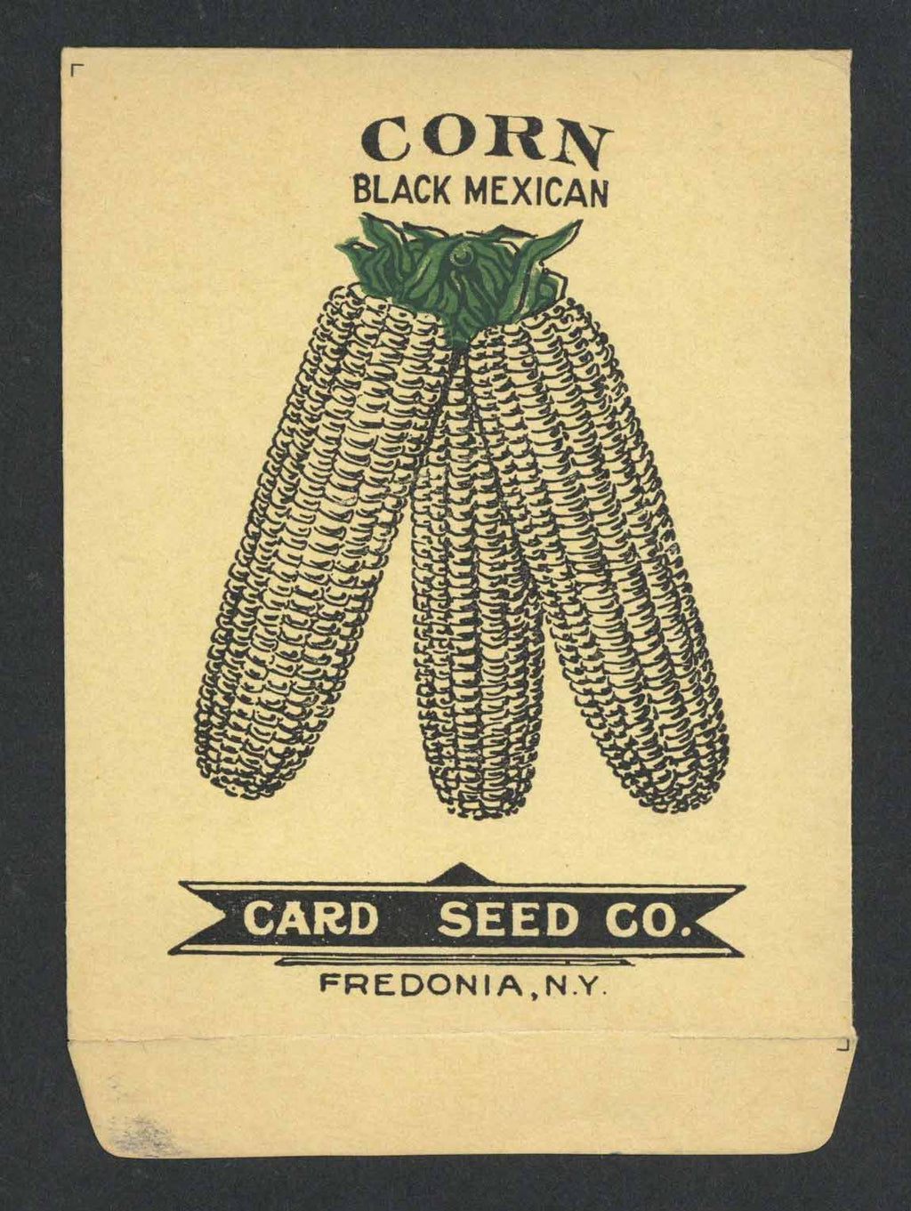 Corn Antique Card Seed Co. Seed Packet, Black Mexican