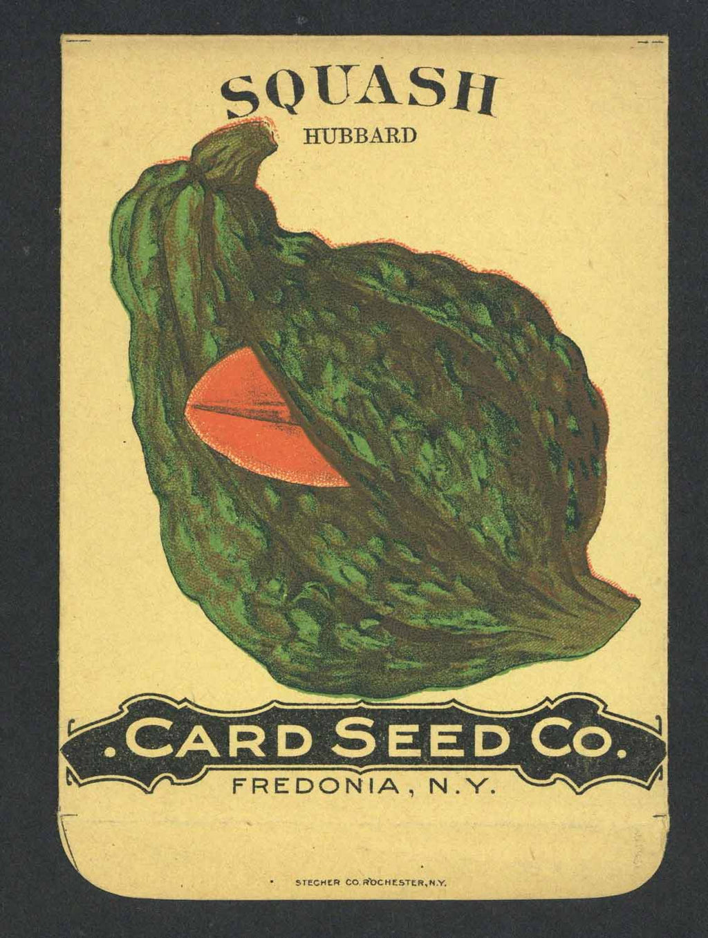 Squash Antique Card Seed Co. Seed Packet, Hubbard
