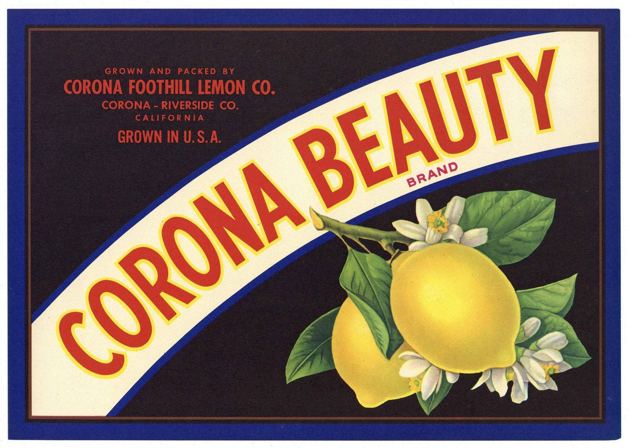 Corona Beauty Brand Vintage Riverside County Lemon Crate Label