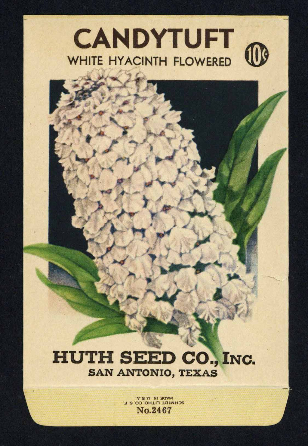 Candytuft Antique Huth Seed Co. Seed Packet