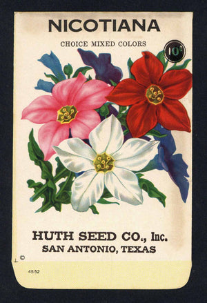 Nicotiana Vintage Huth Seed Co. Seed Packet
