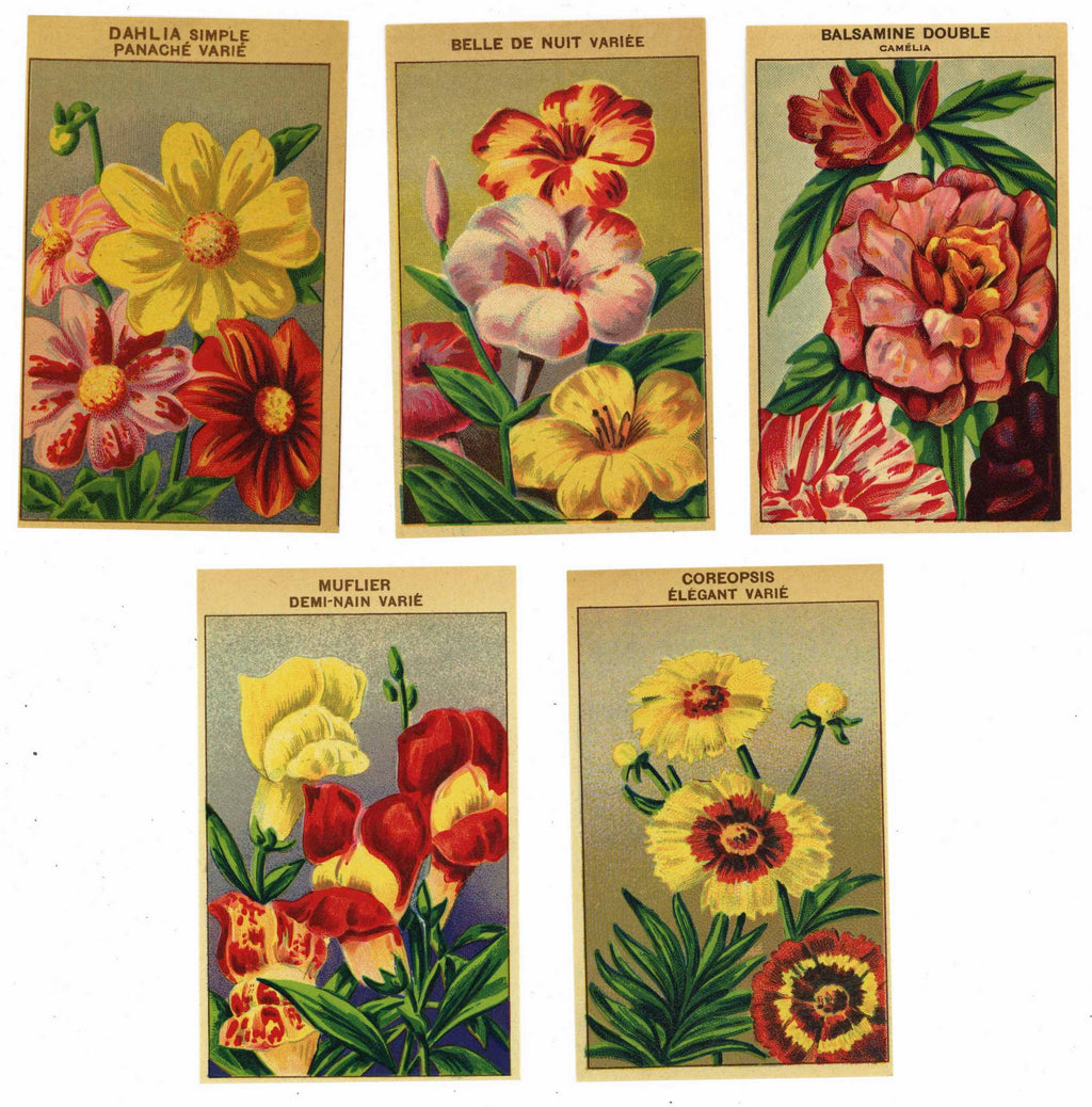French Flower Antique Seed Packet Label Collection #1