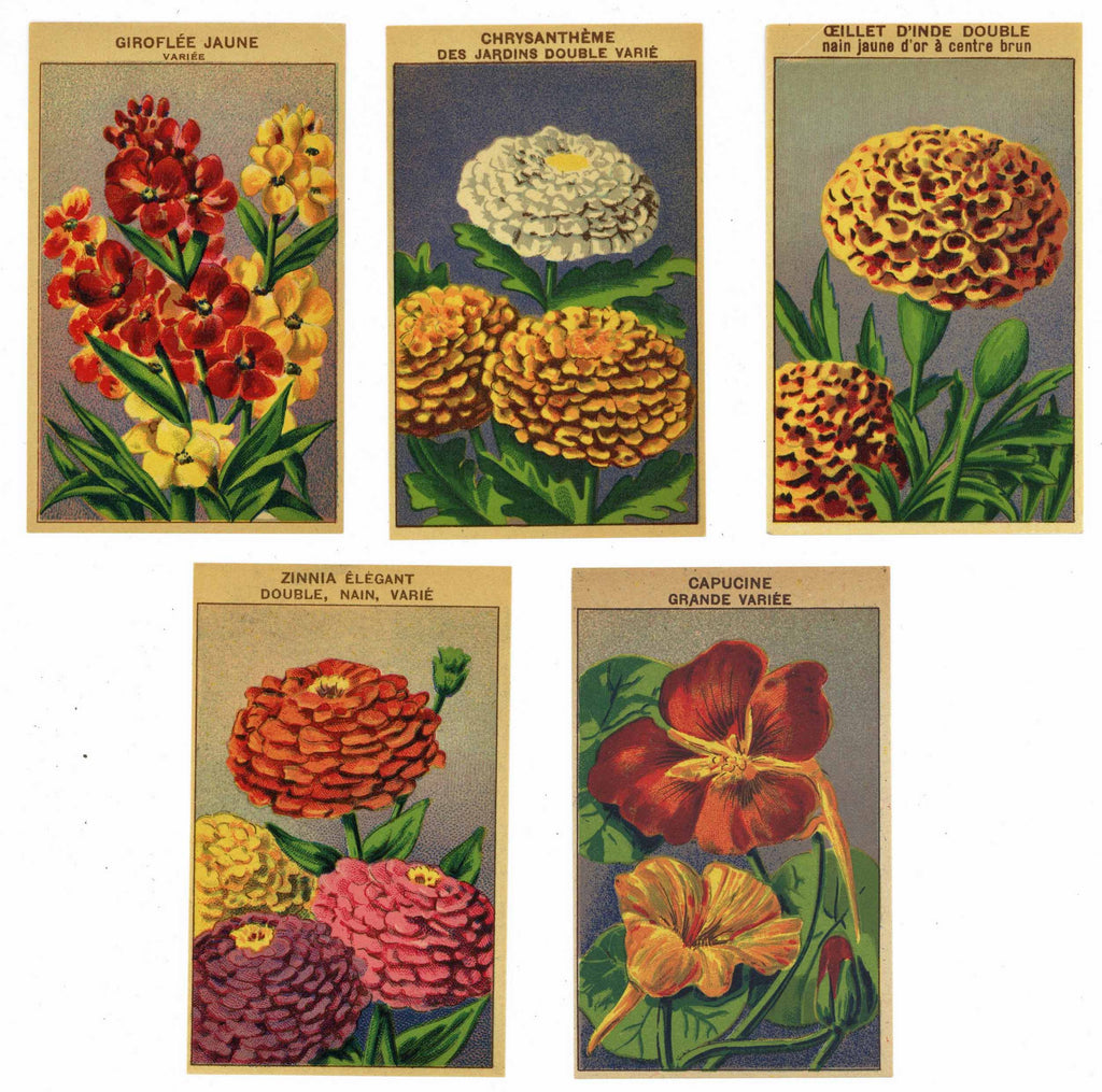 French Flower Antique Seed Packet Label Collection #3