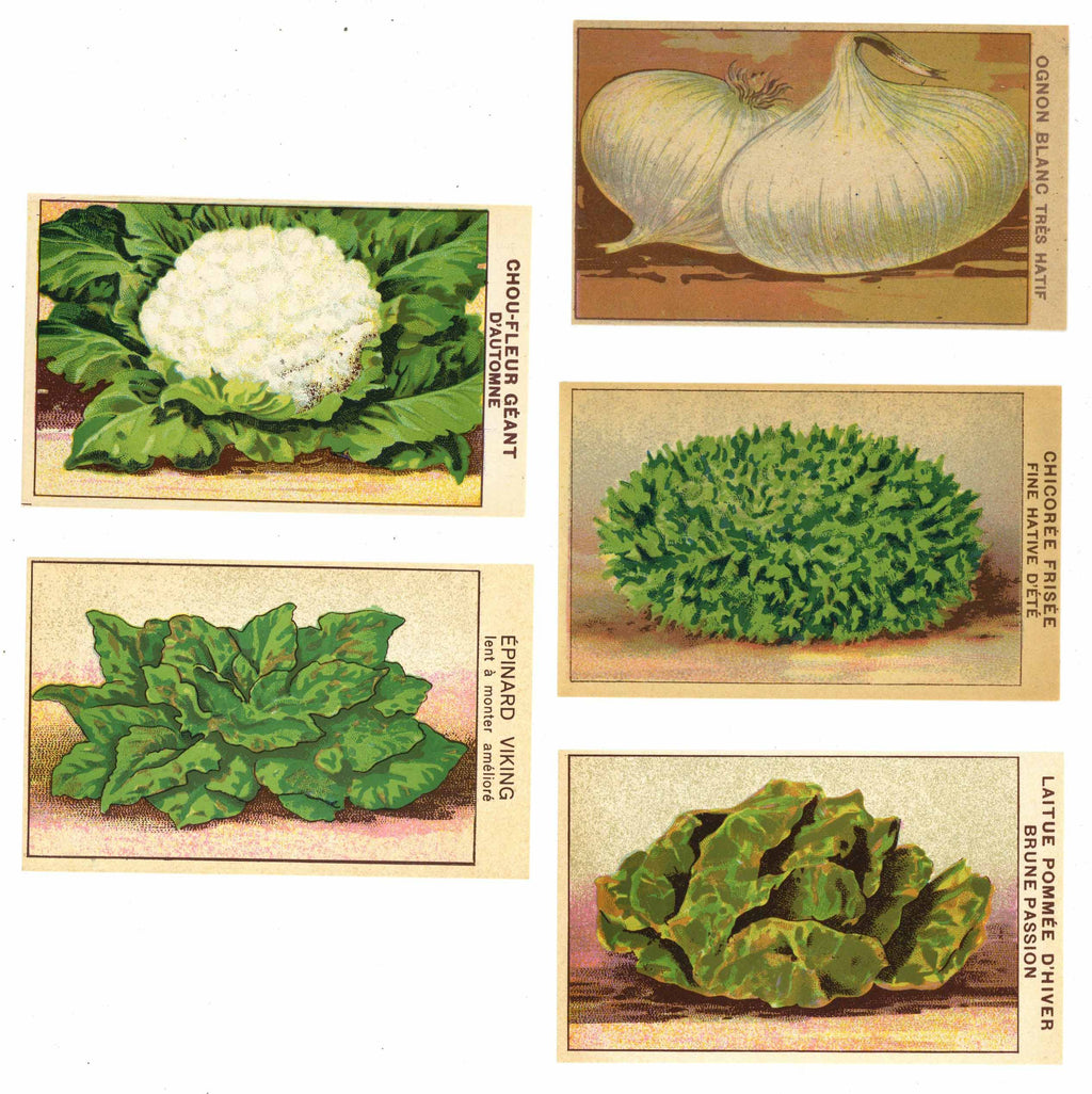 French Vegetable Antique Seed Packet Label Collection #7