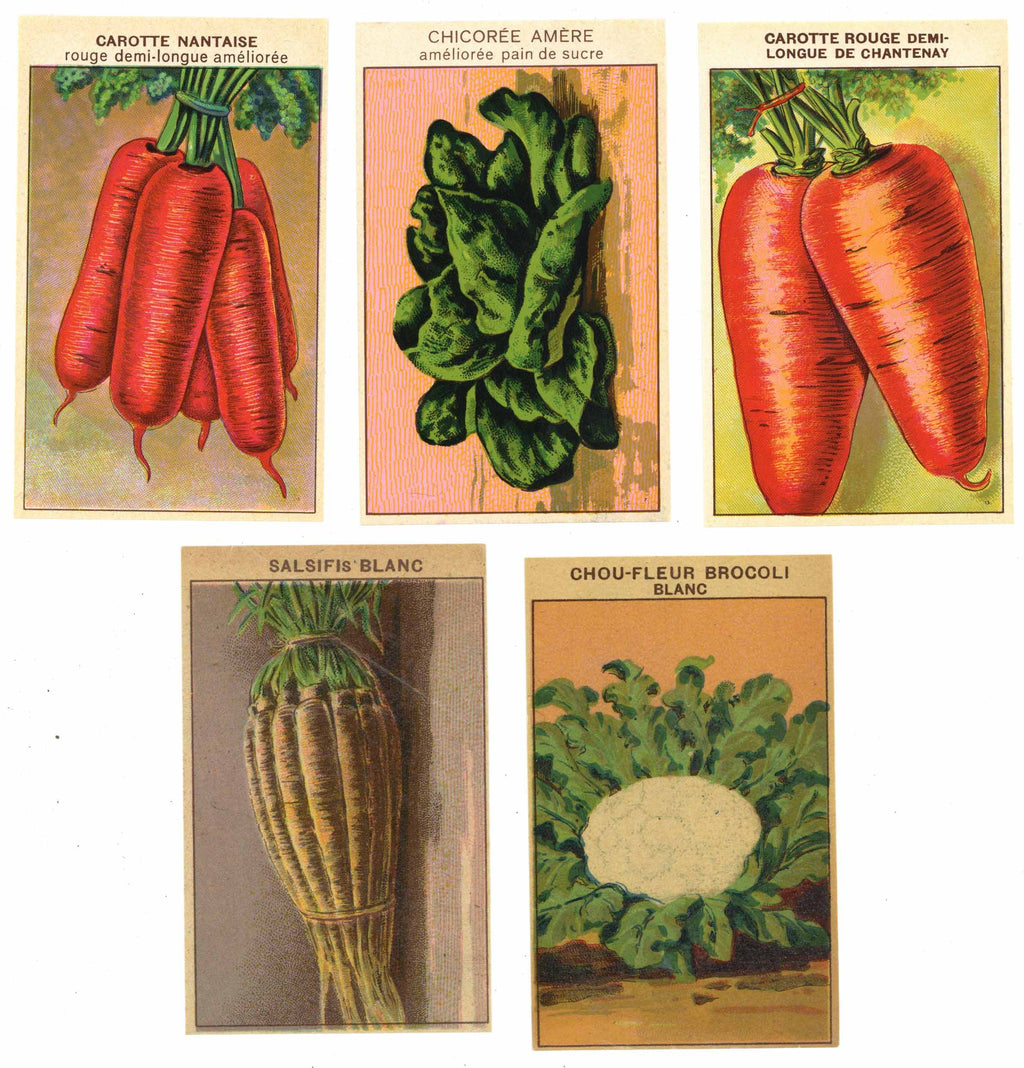 French Vegetable Antique Seed Packet Label Collection #8