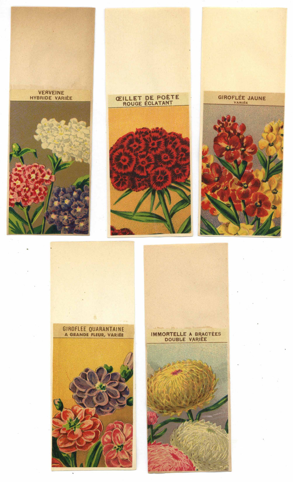 French Flower Antique Seed Packet Collection #17