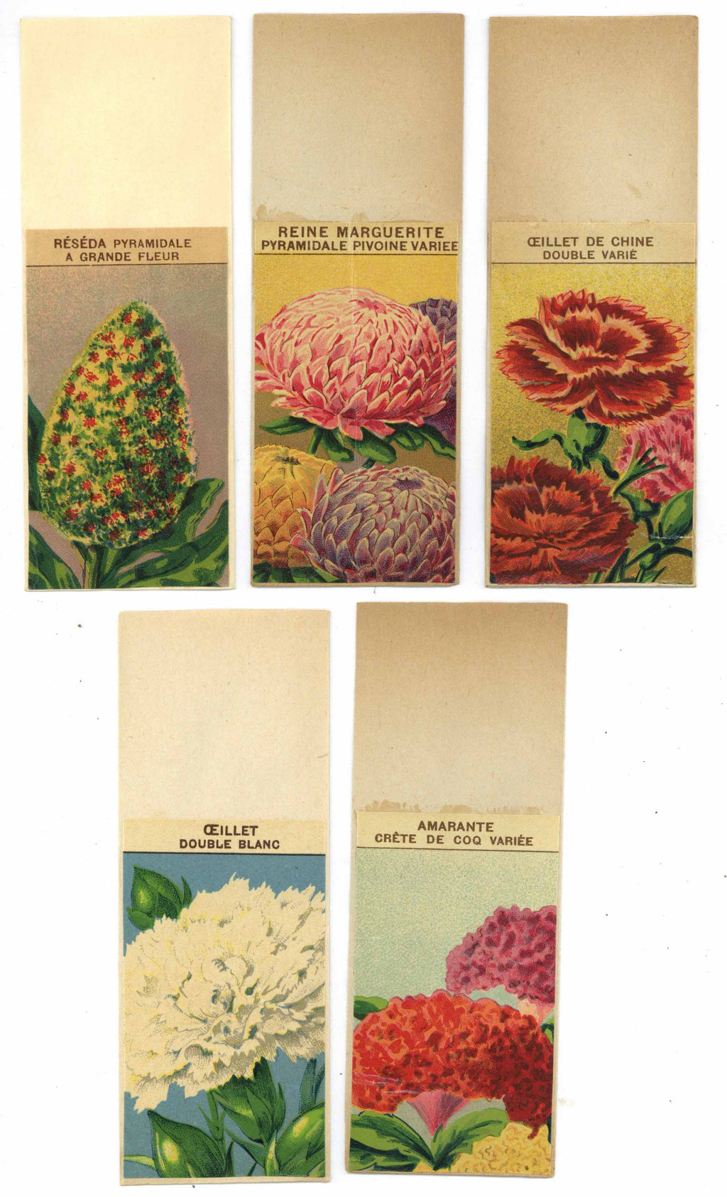French Flower Antique Seed Packet Collection #13