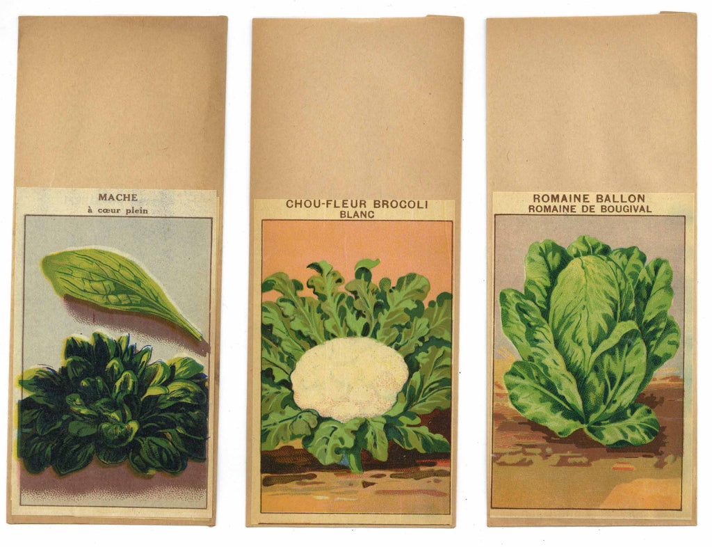 French Vegetable Antique Seed Packet Collection #11