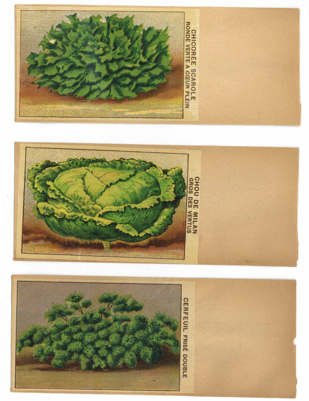 French Vegetable Antique Seed Packet Collection #15