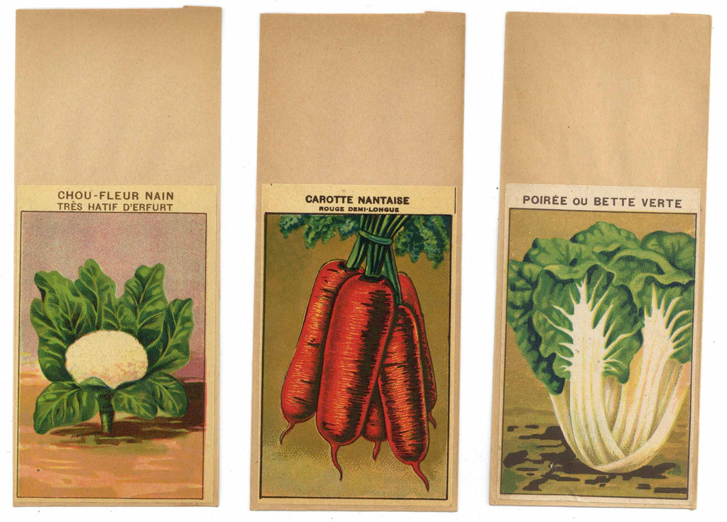 French Vegetable Antique Seed Packet Collection #16