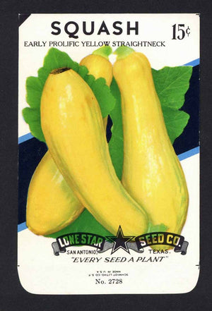 Squash Vintage Lone Star Seed Packet, Yellow