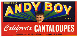 Andy Boy Brand Vintage Salinas Melon Crate Label