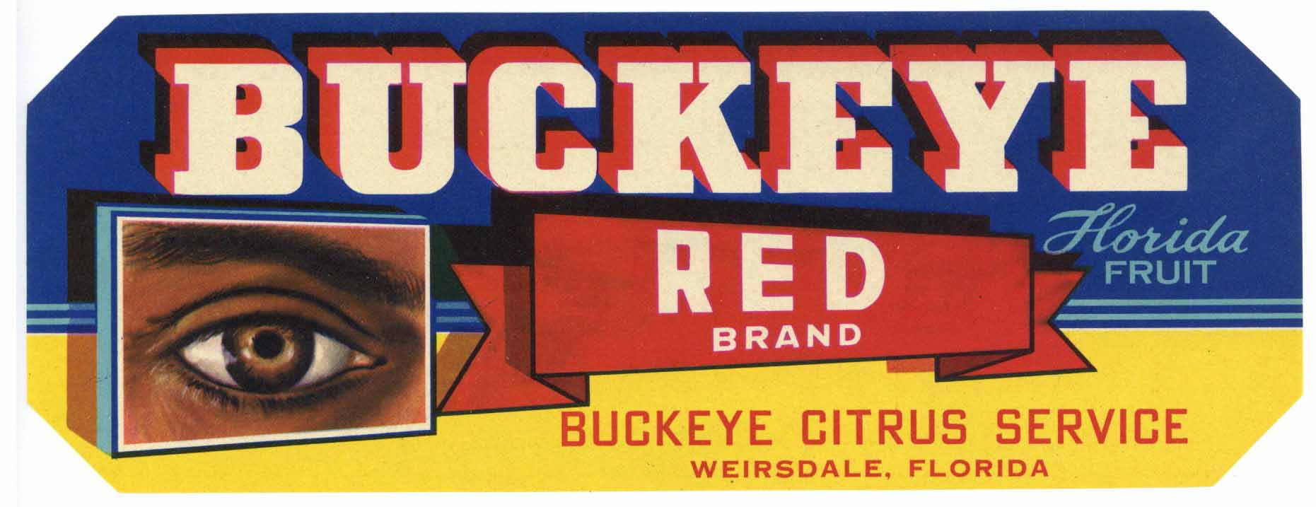 Buckeye Brand Vintage Weirsdale Florida Citrus Crate Label, red