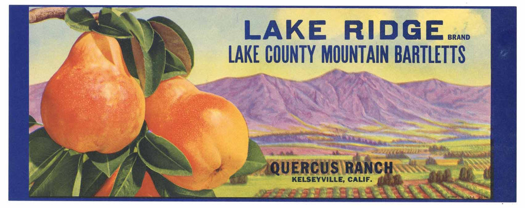 Lake Ridge Brand Kelseyville Pear Crate Label, s