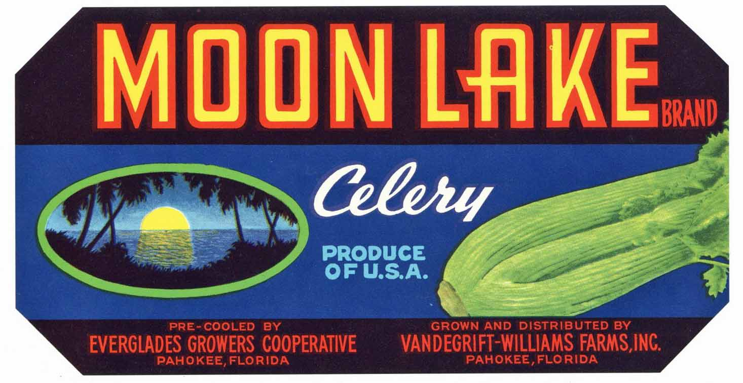 Moon Lake Brand Vintage Pahokee Florida Celery Crate Label