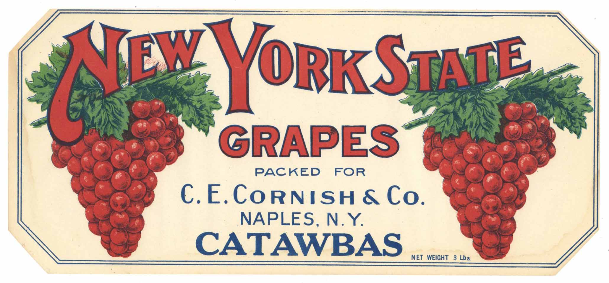 New York State Grapes Concord Choice Fruit Crate Label Edward Lasher Tivoli NY