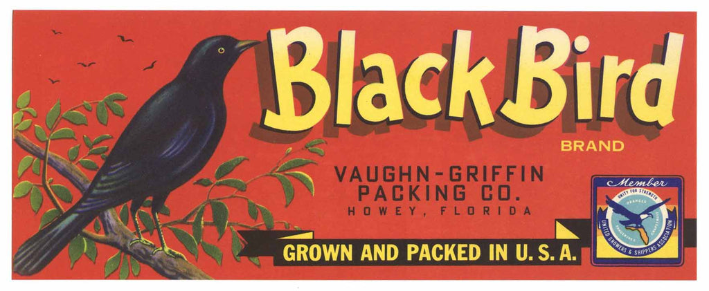 Black Bird Brand Vintage Howey Florida Citrus Crate Label
