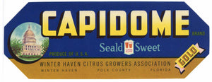 Capidome Brand Vintage Winter Haven Florida Citrus Crate Label, gold