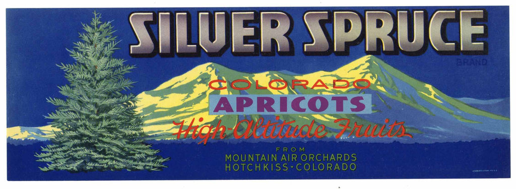 Silver Spruce Brand Vintage Hotchkiss Colorado Apricot Crate Label