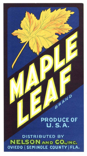 Maple Leaf Brand Vintage Oviedo Florida Citrus Crate Label, str