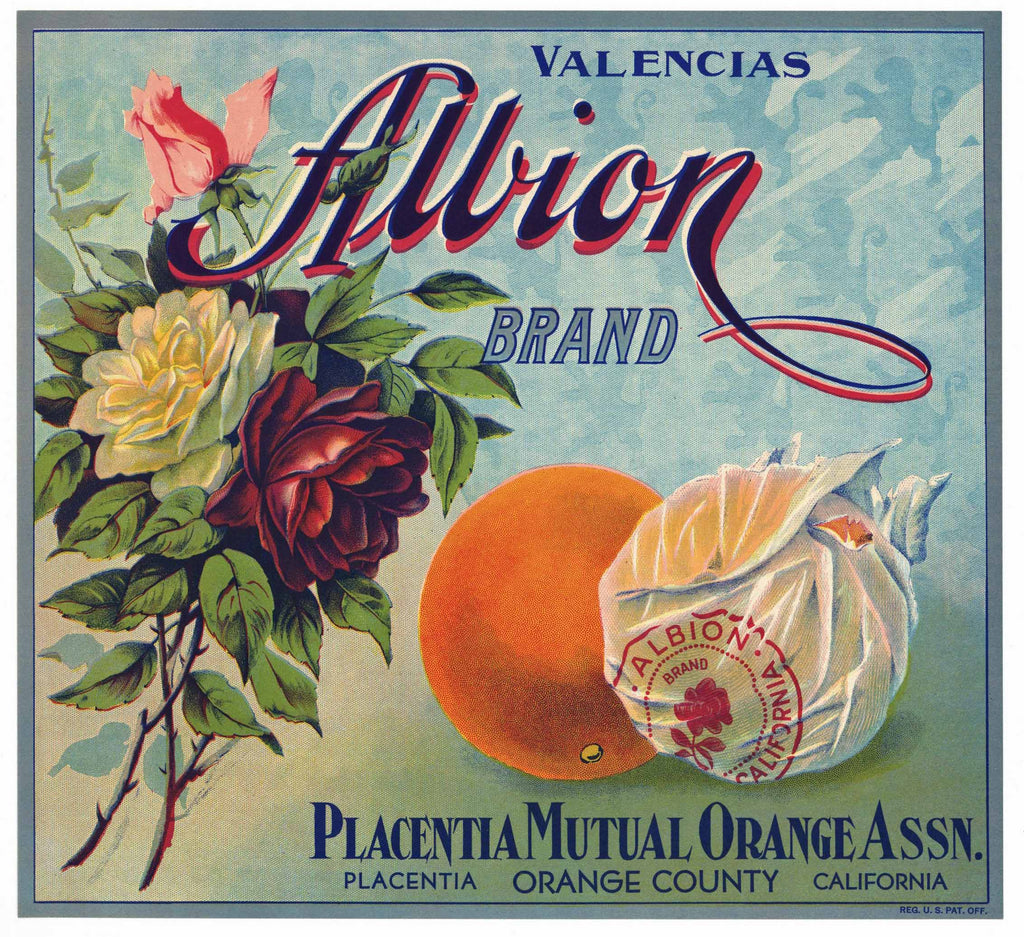 Albion Brand Vintage Placentia, California Orange Crate Label