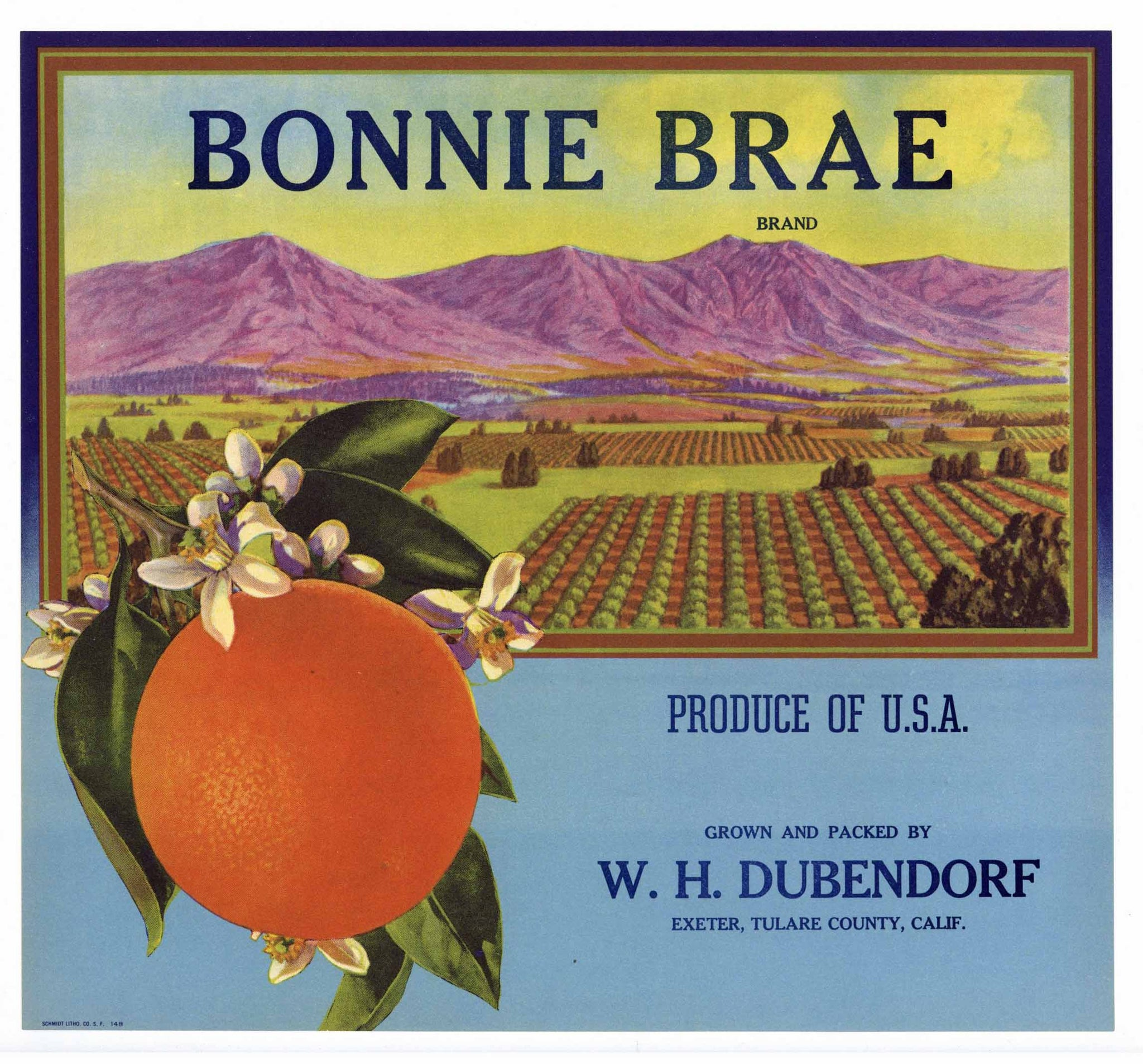 Bonnie Brae Brand Vintage Tulare County Orange Crate Label