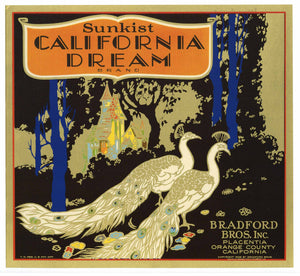 California Dream Brand Vintage Placentia Orange Crate Label