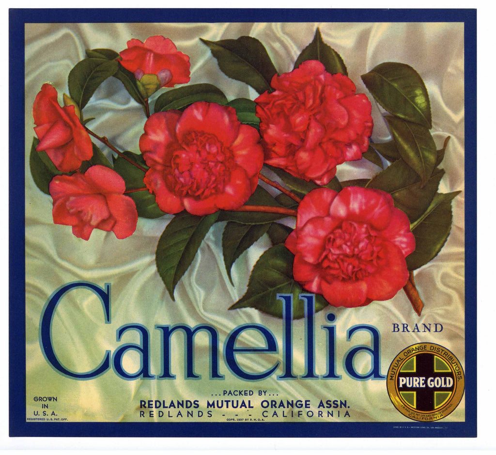 Camellia Brand Vintage Redlands Orange Crate Label