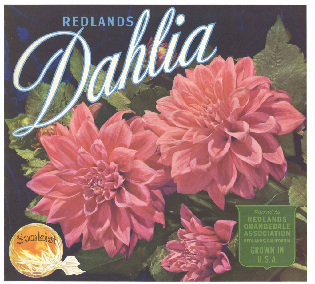 Dahlia Brand Vintage Redlands Orange Crate Label