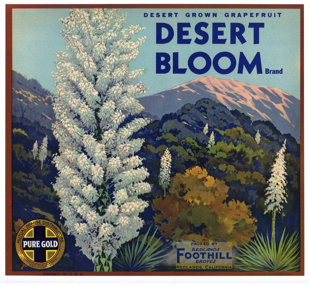 Desert Bloom Brand Vintage Redlands Grapefruit Crate Label