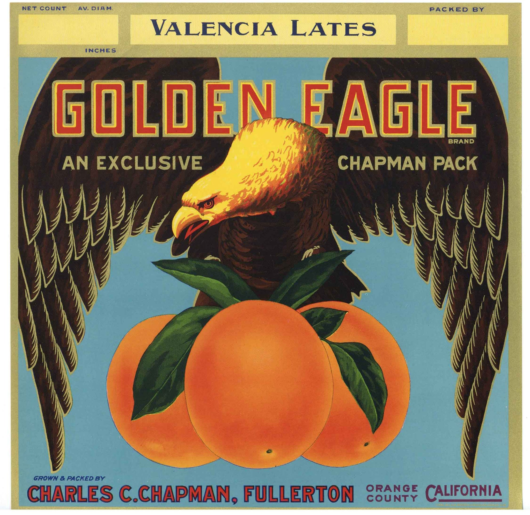 Golden Eagle Brand Vintage Fullerton Orange Crate Label, vl, ht