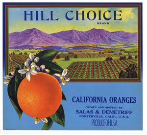 HIILL CHOICE Brand Vintage Orange Crate Label (o080)