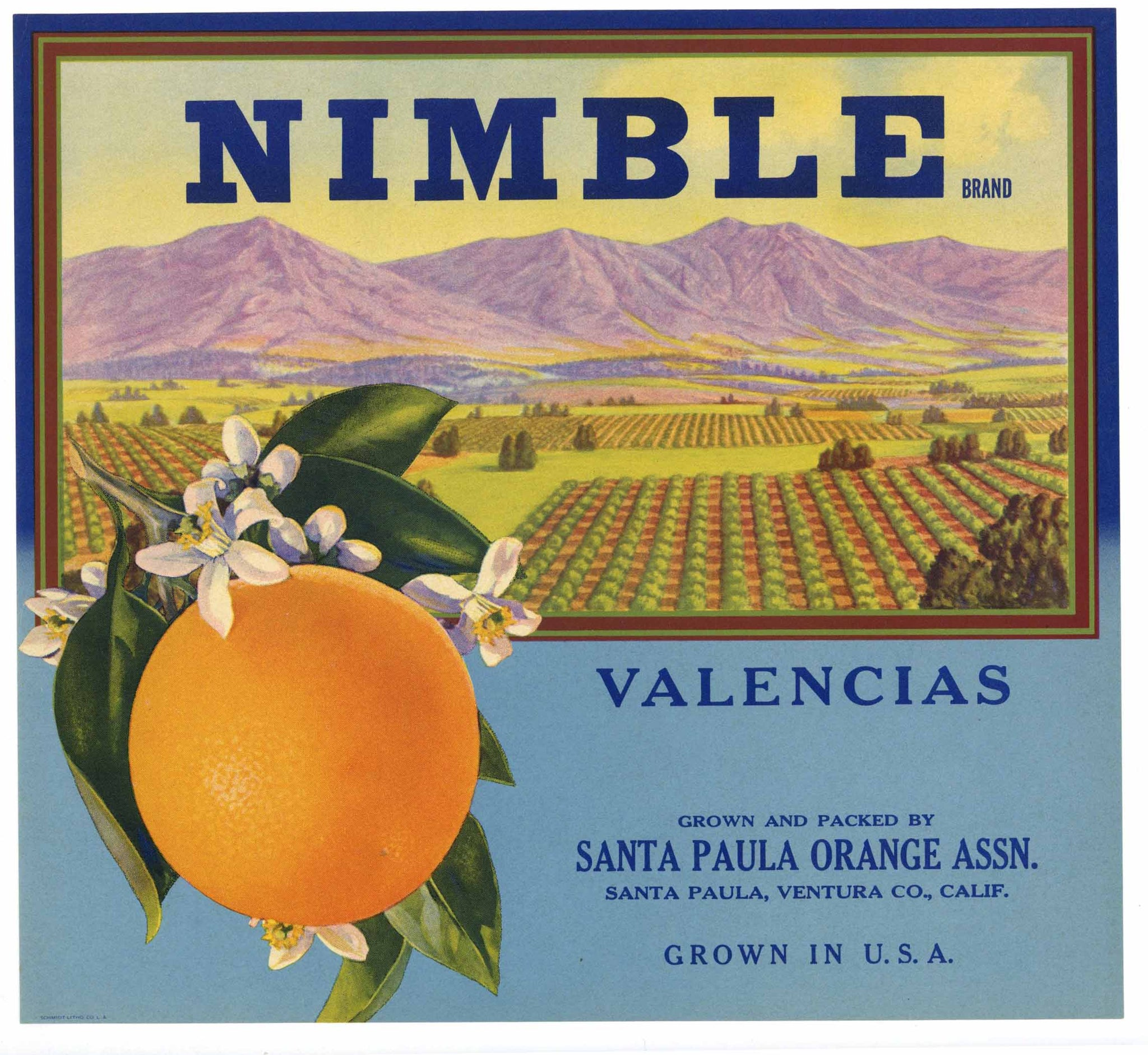 Nimble Brand Vintage Santa Paula Orange Crate Label
